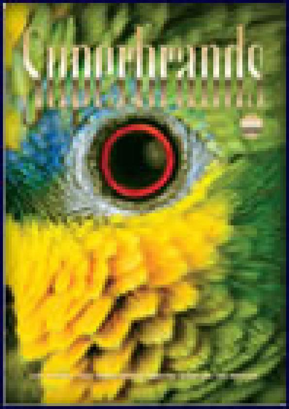 Brazil Volume 4
